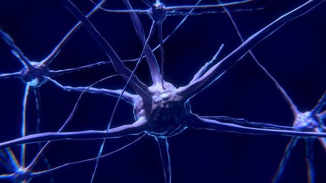 Neuroscienze moderne